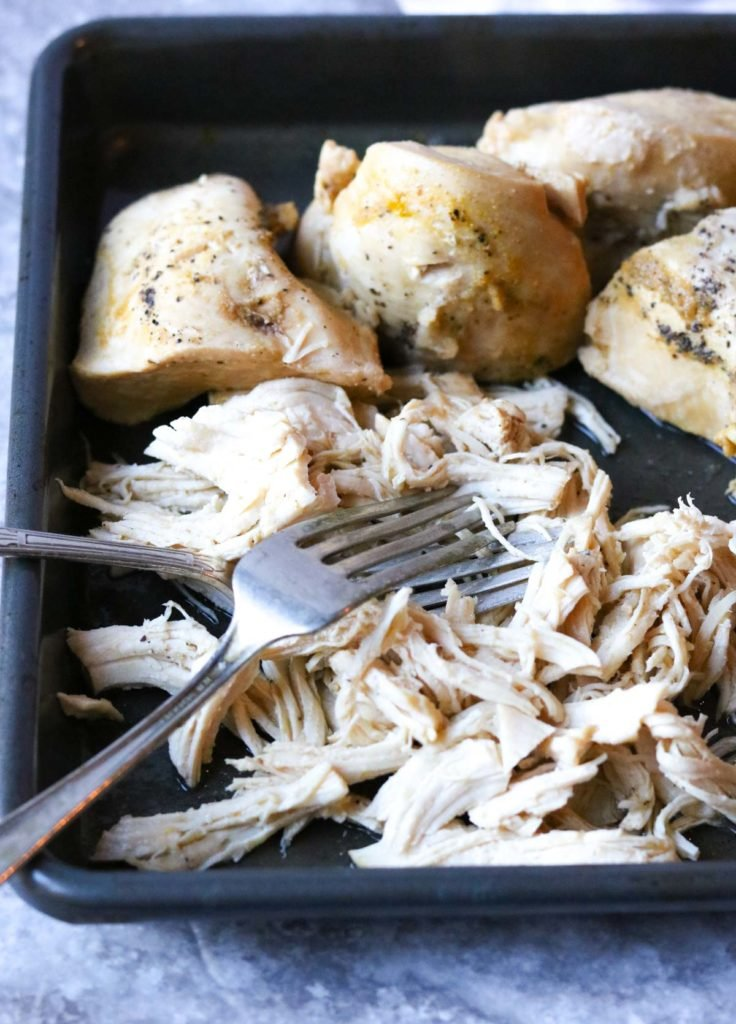chicken being shredded on a baking dish