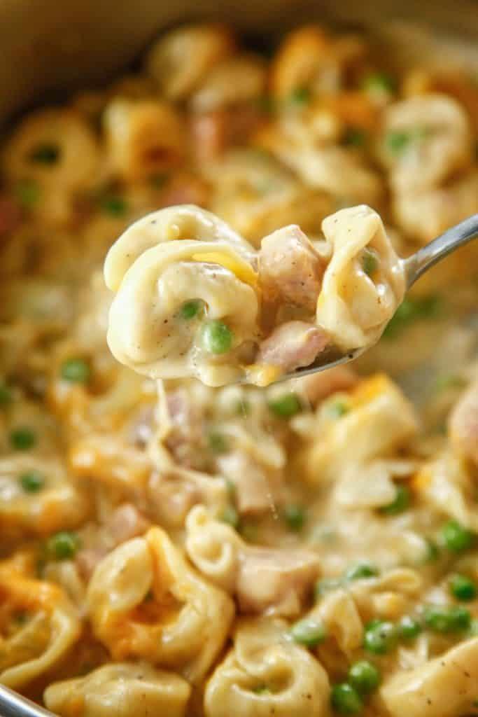 Leftover-Ham-Creamy-Tortellini-3-683x1024