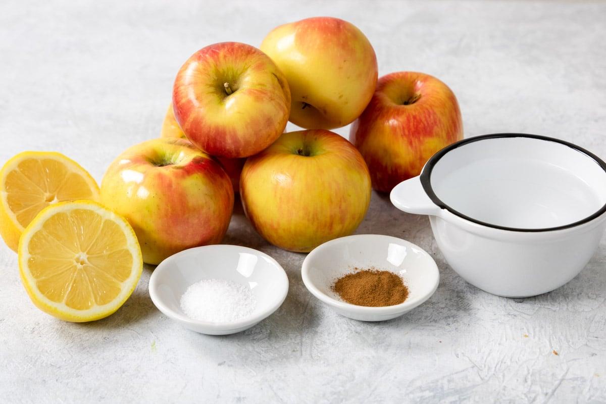 applesauce ingredients - apples, water, lemon, cinnamon, salt
