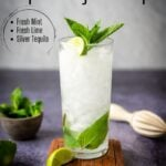 Tequila Mojito in a glass with a fresh mint garnish - pinterest image with text