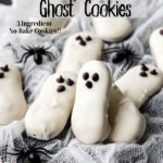 Ghost Cookie pin image with text